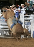 MIKE WHITE INVITATIONAL BULL RIDING & BULL SALE