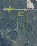 26.5 Acre Building Tract Lee County, GA