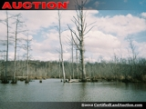 Duck Hunting Property For Sale