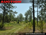 Plantation Style Land For Sale in Georgia