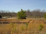 21 Acre Land Tract with Rail, Viaduct Rd., Spartanburg, SC