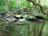 25.639+/- Acres Fronting Overstreet Creek in Bedford County