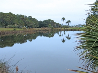 Fripp Island House - Pond in Backyard