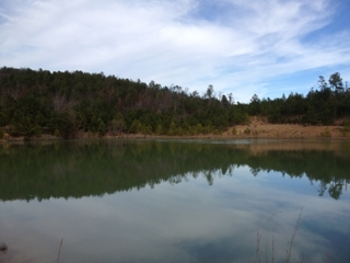 Pond on the 303+/- Acres