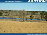 FARM LAND FOR SALE IN SOUTH GEORGIA