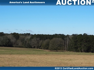 Buy Cheap Land in Georgia At Auction: