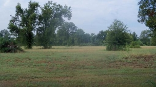 ***AUCTION*** 24.204 ACRES ON ENGLAND DRIVE, ALEXANDRIA, LA