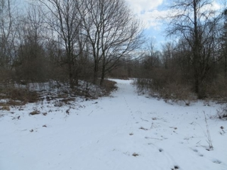 10 acres on Angling Rd. Pembroke, NY
