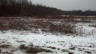 2.2 acres on Cleveland Rd. Pembroke, NY