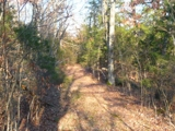 Excellent Home Sites or Hunting Land