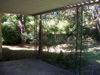 Fenced and shaded backyard with covered patio
