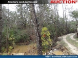 Property Auction Florida - Walton County Acreage