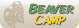 BEAVER CAMP AUCTION