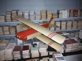 Radio Control Airplane and Electric Train Auction