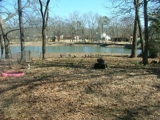 LAKE CATHERINE REAL ESTATE AUCTION