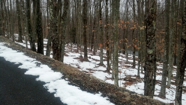 Absolute Auction of Residential Lots in Rocky Knob Subdivision and 2.187 +/- Acre Tract Located in Watauga County near Banner Elk, NC