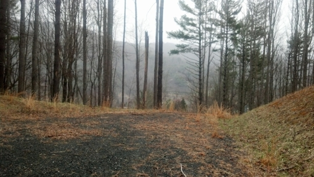 The Ridge at Roan Mountain Subdivision 26.50 +/- Acres Platted for 18 Residential Lots Selling in 1 Tract Located in Carter County near Roan Mountain, TN
