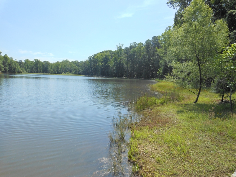 Onsite & Online AUCTION! 06/26/13! 175ac w/Lake