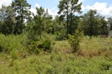 Residential lot in Bluejay - Middleburg, FL
