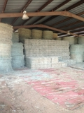 Round & Square Hay For Sale