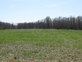 southern view from 145 ac tract