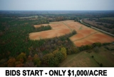 Nottoway, VA - 361± AC Riverfront Farm Offered in 2 Tracts - Timber/Tobacco/Hunting