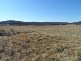 6+/- ACRES UNDEVELOPED LAND ON NEW HWY 412