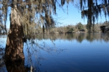 5+ Acres on the Suwannee River