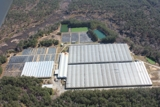 55.48± acre Bank-Owned Greenhouse Facility!!!