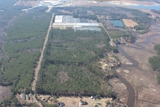 76±± acre Bank-Owned Timber Tract!!!