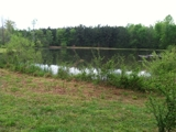 26 ACRES WITH NICE LAKE