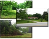Absolute Auction of 3 Estate Owned Land Tracts in Loganville, GA