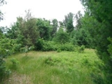 Auction:1.11 Acre Residential Parcel-Timber Shores