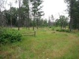 Auction: Wooded Lot w/ Lake Camelot Access