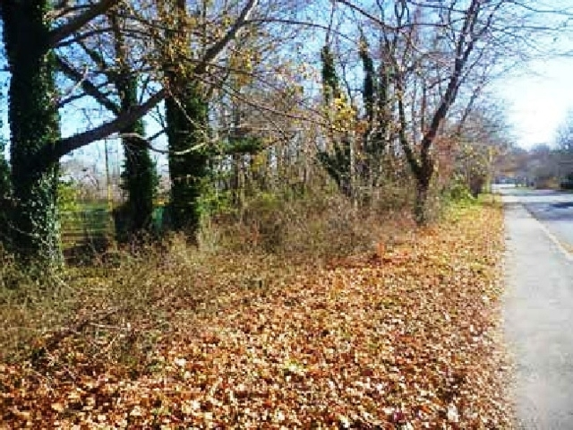 Absolute Auction of Wooded Lot in Falmouth, MA (Barnstable Co.)