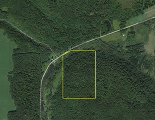 AUCTION! 55 +/- Acres