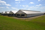 BANK OWNED COMPLETE NURSERY GREENHOUSE, SHOP EQUIPMENT