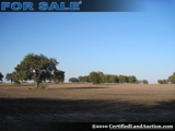Florida Land For Sale Marion County Florida Real Estate For Sale: 495 +/- Ac
