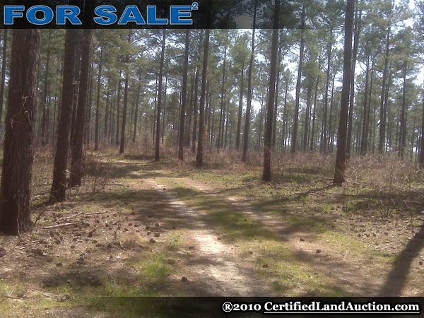 landwatch land for sale acreage for sale lots for sale