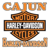 Cajun Harley Davidson Motorcycles For Sale at Auction