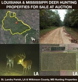 Louisiana & Mississippi Deer Hunting Properties For Sale at Auction