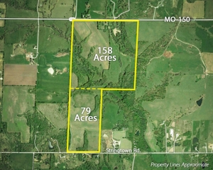 Absolute Land Auction -- 237 Acres m/l
