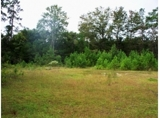 Pawleys Island Residential Lot - Auction