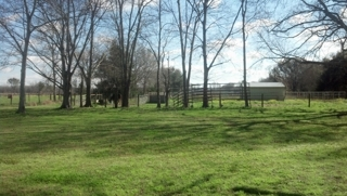 40+/- Acre Horse Farm Opelousas, La