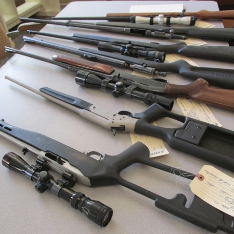 GUN AUCTION - Stafford Auction & Realty