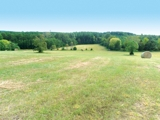 ABSOLUTE: 189.69 Acres in 2 Parcels