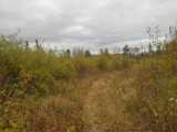 DULUTH/TWO HARBORS/BRIMSON AREA LAND AUCTION