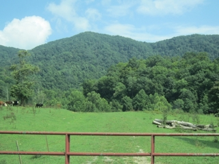 Scott County, VA Farm