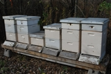 Beekeeper and Hobby Farm Equipment