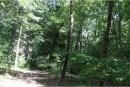 Auction: Buildable Waterfront Lot w. 2.4 Ac